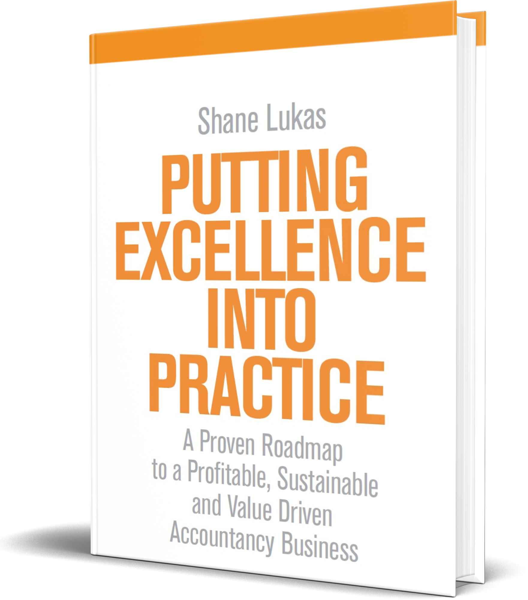 Shane Lukas Putting Excellence Into Practice