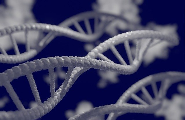 Put business advisory in the DNA of your firm